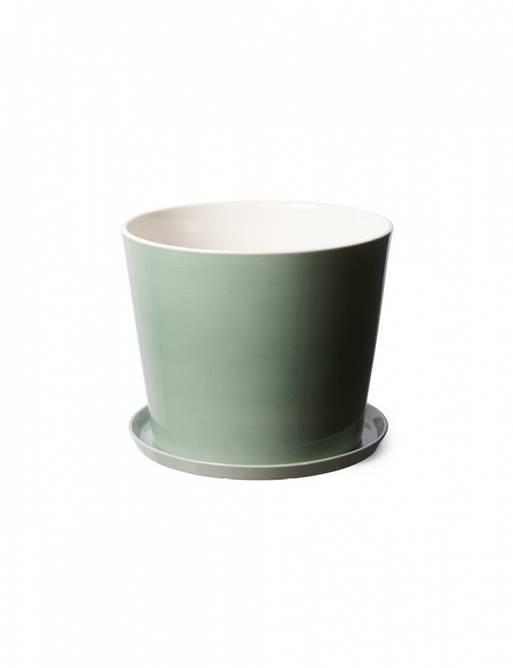 Bilde av Flowerpot jade